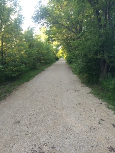 Pretty new running trails. Too bad I felt too unmotivated to enjoy them.
