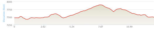 There's like a bit of a mountain to climb during miles 5-8.